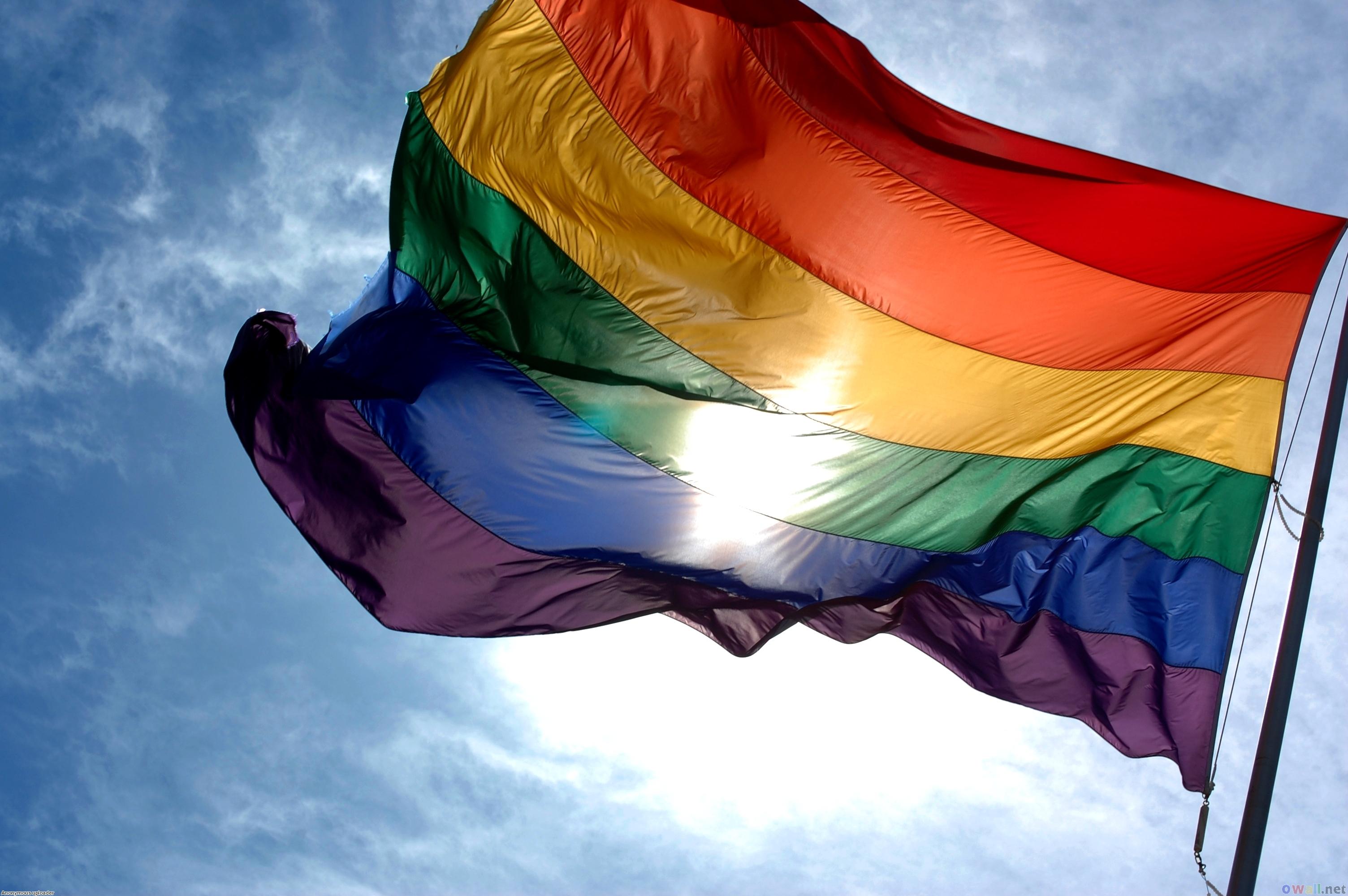 13-GayFlag